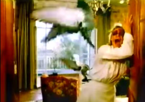 Beaks-1987-birds-attack-nurse