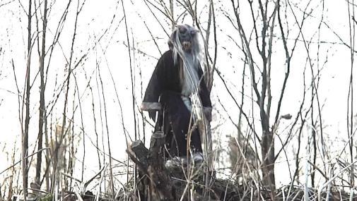 Krampus-Christmas-Devil-woods-2013