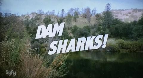 Dam_Sharks_2016_title