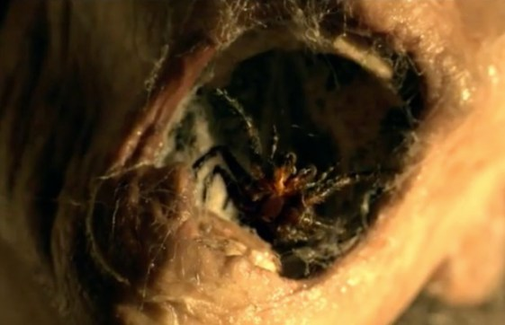 Nest-3D-funnel-web-spider-horror-movie