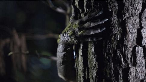 enclosure-2016-supernatural-horror-movie