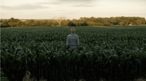 lavender-2016-horror-movie-abbie-cornish