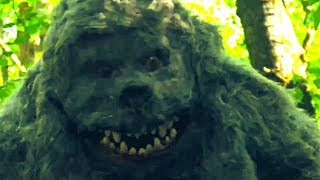 Wreck-In-the-Woods-movie-film-gangster-horror-creature-feature-monster-2020