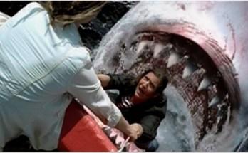 Shark_Attack_Mediterranean_5