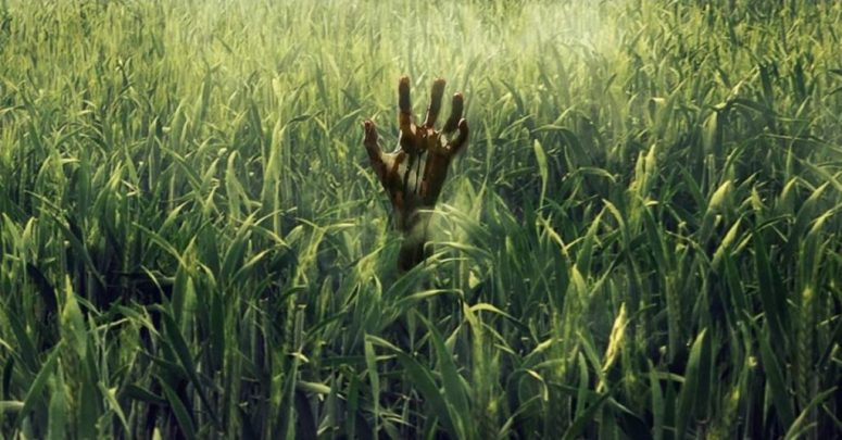 in-the-tall-grass-banner-hand