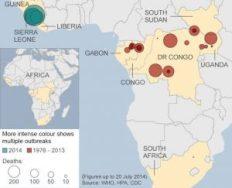 ebola deaths 2014
