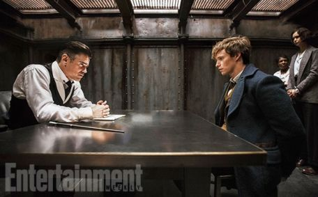 Colin Farrell, Eddie Redmayne & Katherine Waterston in Fantastic Beasts and Where to Find Them