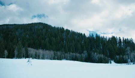 Image of Wind River