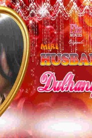 Mere Husband Kee Dulhaniya (2020) Hindi WEB-DL – 720P – 200MB – All Episode – Download & Watch Online