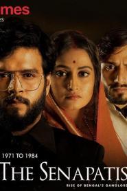 The Senapatis Vol-1 (2019) Hindi [Season 01 Complete] WEB-DL – 720P – x264 – 1.4GB – Download