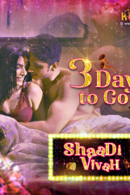 Shaadi Vivah 2020 Hindi Complete Web Series
