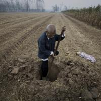 UM FOTÓGRAFO ÀS TERÇAS: Lu Guang