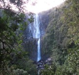 Wairere Falls - tallest waterfall on North Island