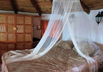 Bett - Die Sierra Gorda - Das grüne Juwel im Herzen Mexikos