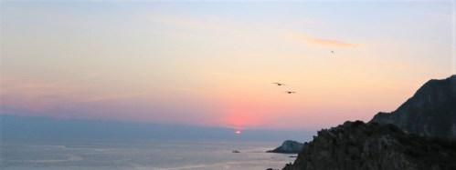 Vögel am Horizont