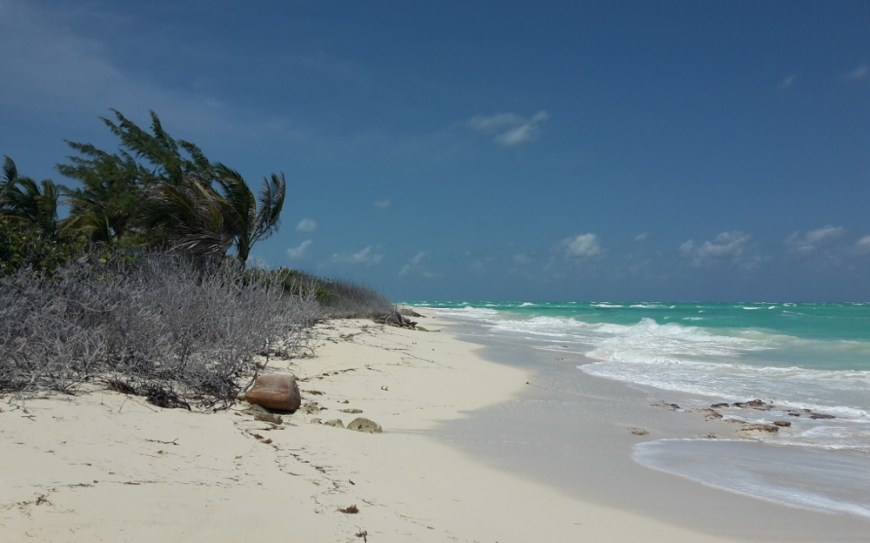 Karibischer Strand Isla Blanca Mexiko