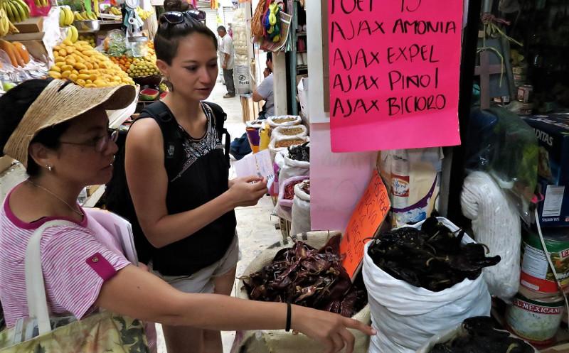 Mercado qro blog 1 - Querétaro - Der beste Start für dein Mexiko Abenteuer