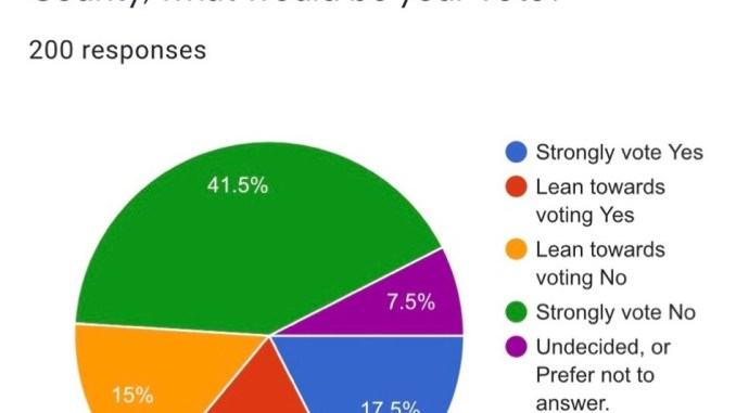 Pie chart showing results of the transportation SPLOST survey (Google photo)
