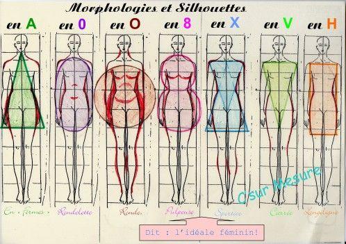 Morphologies féminines