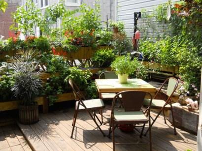 Jardin sur balcon 10