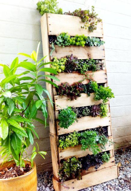 Nouvelle tendance, le jardin vertical 21