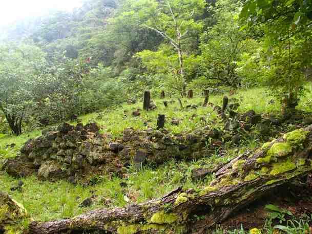 Vestiges de marae, à coté du 2e refuge (au fond de la vallée)