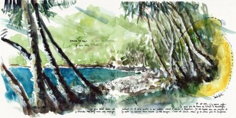 La baie des dauphins, chez Titare (10-11)