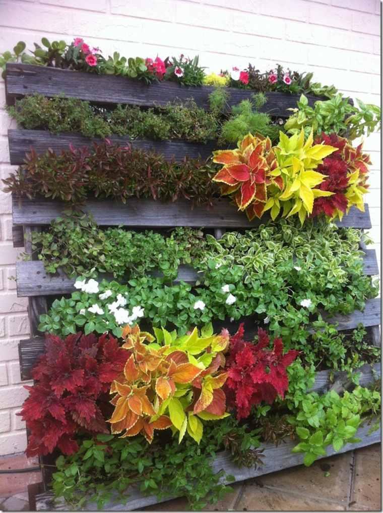 jardin-vertical-idee