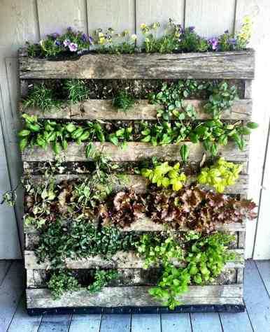 palette-bois-mur-vegetal-idee-pot-de-fleurs