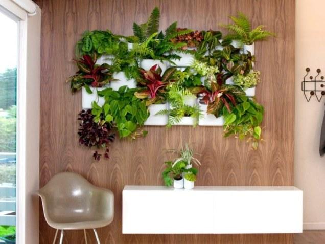 potager-vertical-mur-plante-vegetaux