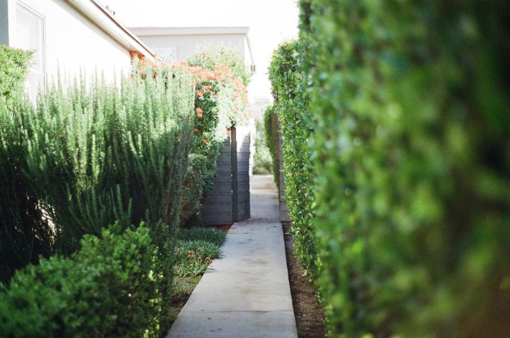 Des idées pour aménager son jardin - Moving Tahiti