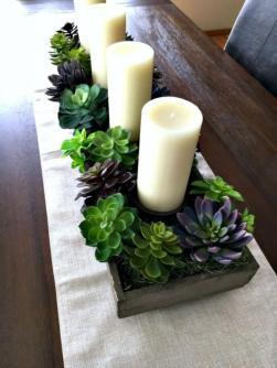 plantes-grasses-dintérieur-centre-de-table-plantes-vivantes-et-bougies
