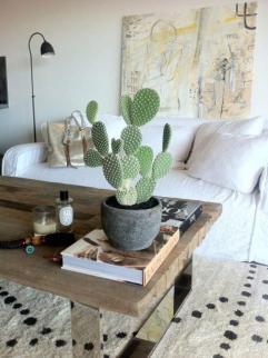 plantes-grasses-dintérieur-grande-table-en-bois-et-acier-pot-avec-cactée