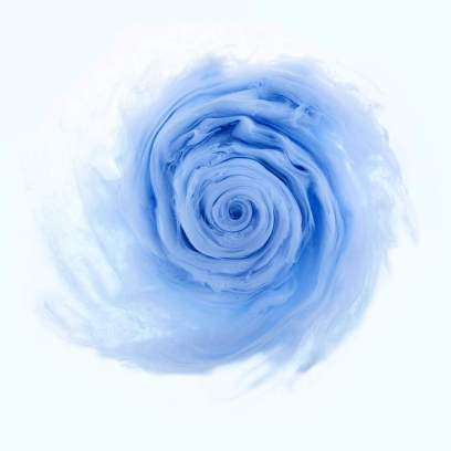flowers-and-swirls-Mark-Mawson-13