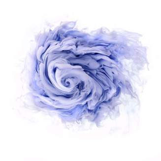 flowers-and-swirls-Mark-Mawson-17