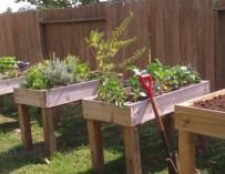 Jardiner debout pour plus de confort