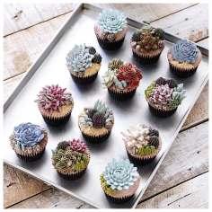 Iven-Kawi-terrarium-flower-cakes-21