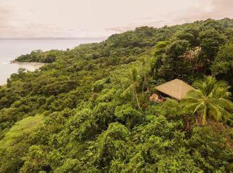 Costa Rica : Le Lapa Rios Ecolodge, un voyage au coeur de la jungle