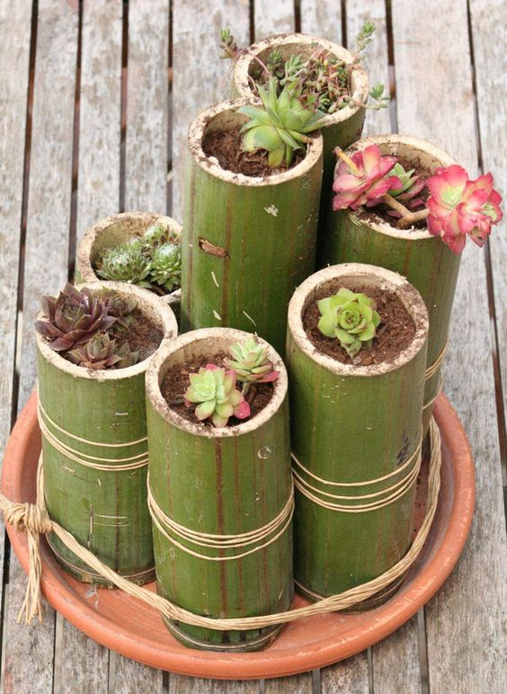Le Bambou Deco Une Note Organique Moving Tahiti
