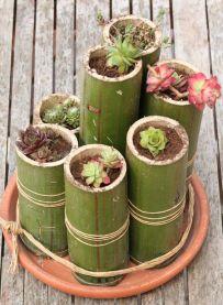 deco bambou (9)