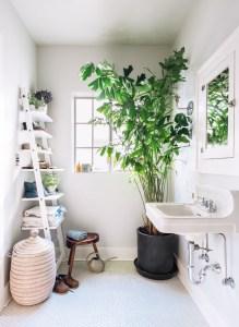 des-plantes-vertes-sur-le-sol-de-la-salle