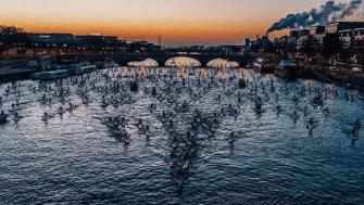 700 Stand Up Paddles sur la Seine, des images à voir