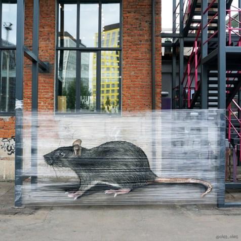 peint-sur-cellophane-street-art-evgeny-ches-10