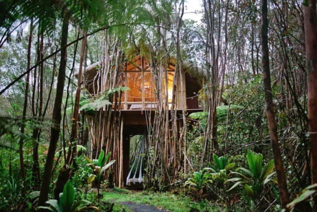 Dreamy Tropical Tree House 02