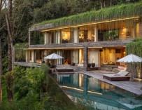 La Villa Chameleon offre un paysage à couper le souffle dans la jungle balinaise