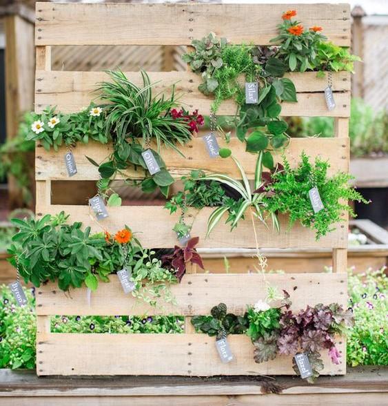 Jardinière de légume verticale