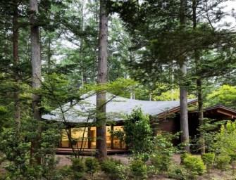 « Four Leaves Villa » par le studio Kias : une ode à la nature
