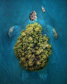 Photos surréalistes réalisées par Zulkarnain Ismail