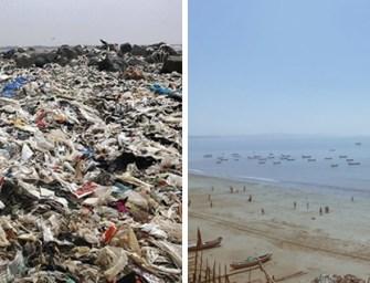 13 nouvelles positives sur les initiatives qui sauvent notre planète