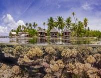 Les gagnants du concours de photographie sous-marine UPY 2019